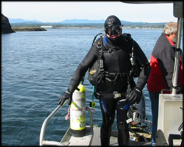 Diving near Quadra Island. You might notice that my weight belt had come a bit loose and was hanging on my butt, not my waist.