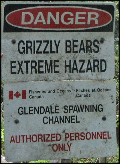 Grizzly bears can be an extreme hazard